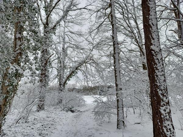 De natutpoort in de winter